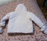 Продам новую куртку на сентапоне  на девочку 1.5-2 года. Запоріжжя, Запорізька область. фото 3