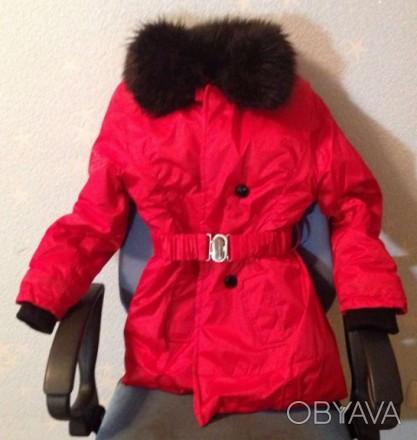 Теплая зимняя куртка красного цвета, с воротником который отстегивается.. Запорожье, Запорожская область. фото 1