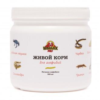 Живой корм для амфибий - Зофобас 500 шт.. Киев. фото 1