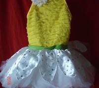 Продам  платье для танцев р. SC Revolution dancewear. Оригинал из Америки. Можн. Черкассы, Черкасская область. фото 2