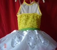 Продам  платье для танцев р. SC Revolution dancewear. Оригинал из Америки. Можн. Черкассы, Черкасская область. фото 3