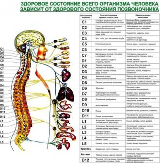 Консультація та лікування: головного болю, безсоння, невралгії, остеохондрозу хр. Черновцы, Черновицкая область. фото 3