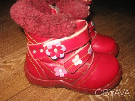 сапожки зимові шкіряні червоного кольору. Устілка 15см. Миргород, Полтавская область. фото 1