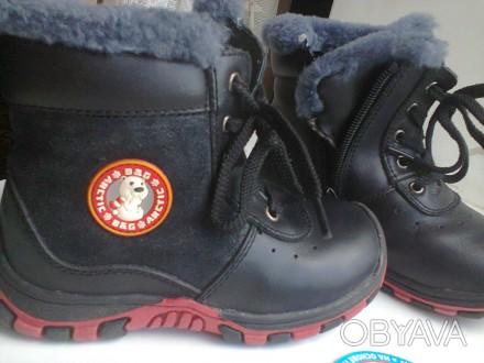 1 Ботинки B&G кожа+цигейка 26р  одевались несколько раз зима была теплая по этом. Мелитополь, Запорожская область. фото 1