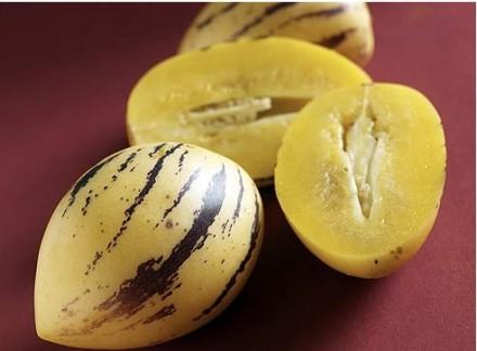 Плод пепино, по сути, ягода. Как, скажем, арбуз или дыня. Форма его иногда напом. Мариуполь, Донецкая область. фото 3
