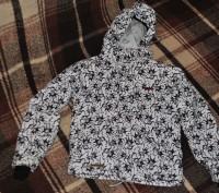 Лыжный костюм Envy для мальчика. Размер курточки 122/128, размер штанов 110/116.. Киев, Киевская область. фото 3