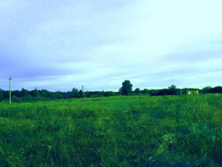 Мы не продаём Мечту, но мы предлагаем пространство , где  Мечта воплотится в реа. Киенка, Черниговская область. фото 4