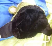 Ищите необычную шапочку для своего малыша? Да еще и теплую? В такой шапке вашег. Полтава, Полтавская область. фото 4