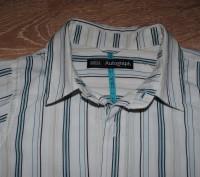 Классная брендовая рубашечка на мальчика. Качество просто - супер! Фирма MARKS&. Полтава, Полтавская область. фото 7