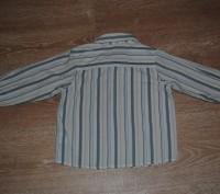 Классная брендовая рубашечка на мальчика. Качество просто - супер! Фирма MARKS&. Полтава, Полтавська область. фото 6