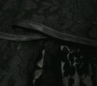 Юбка для тренировки бальных танцев латина, черная,на кокетке, спереди короче,низ. Полтава, Полтавська область. фото 4