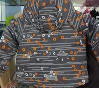 Предлагаю красивый комплект производство Reima Tec В наличии рост 86,98 Утепли. Запоріжжя, Запорізька область. фото 3