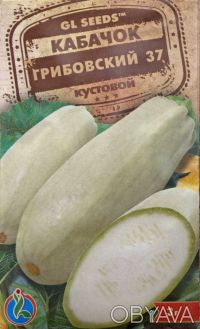 Семена овощных и цветочных культур. Обухов, Киевская область. фото 4
