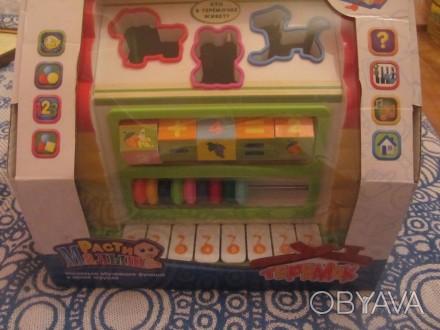 """Логический домик """"Теремок"""" — многофункциональная развивающая музыкальная игрушка. Борисполь, Киевская область. фото 1"""