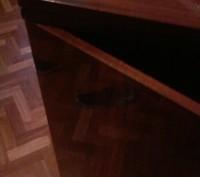 Универсальная швейная машинка Чайка, с ножным приводом, есть возможность присоед. Киев, Киевская область. фото 3