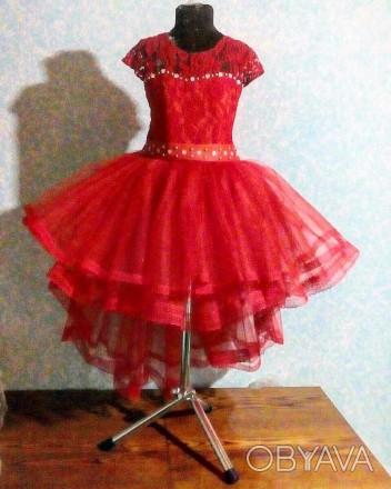 Нарядные платья    Есть любые размеры и разные цвета - на ваш вкус (можем ско. Полтава, Полтавская область. фото 1