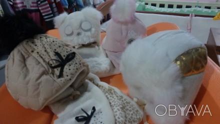 Предлагаю зимние шапки и комплекты   -dembo house  В наличии  фото  2-3 ко. Запорожье, Запорожская область. фото 1