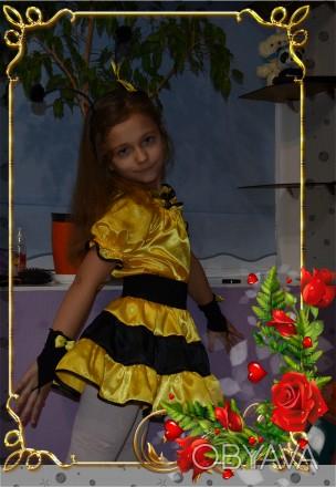 Карнавальные костюмы  для   праздников для  детей 4-6 лет.ПРОКАТ!!!. Хмельницький, Хмельницька область. фото 1