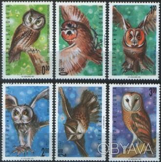 Болгария - совы   1992 г.в. MI# 4032 - 4037 MNH XF  Полная серия         . Одесса, Одесская область. фото 1
