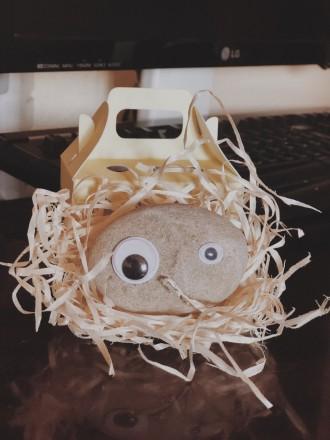 И так знакомьтесь - новый друг.  Удивительная игрушка-питомец «камінь-улюбленець. Киев, Киевская область. фото 3