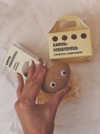 И так знакомьтесь - новый друг.  Удивительная игрушка-питомец «камінь-улюбленець. Киев, Киевская область. фото 9