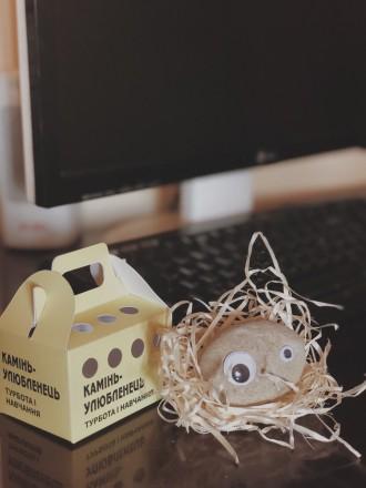 И так знакомьтесь - новый друг.  Удивительная игрушка-питомец «камінь-улюбленець. Киев, Киевская область. фото 5