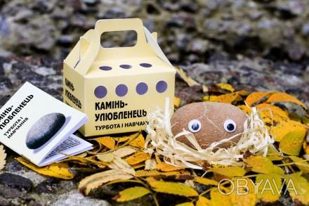 И так знакомьтесь - новый друг.  Удивительная игрушка-питомец «камінь-улюбленець. Киев, Киевская область. фото 1