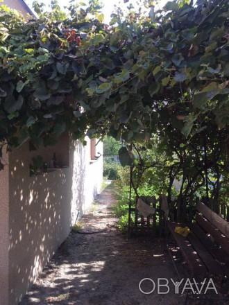добротна, цегляна частина будинку з окремим двором і садом. Для справжнього хозя. Белая Церковь, Киевская область. фото 1