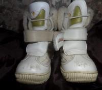 Деткие зимние сапожки фирмы DJOI. Житомир. фото 1
