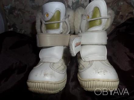 Детские зимние кожаные сапожки фирмы DJOI.Размер 24 \длина стельки 15.5 =16 см\ . Житомир, Житомирська область. фото 1
