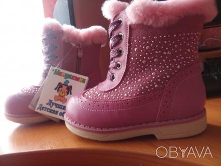 Новые, ортопедические зимние ботиночки Шалунишка, без дефектов, просто подарили,. Житомир, Житомирская область. фото 1