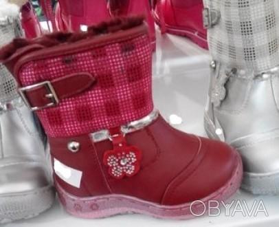 Зимние сапожки-ботинки кожаные.Внутри натуральный мех-цигейка.Съёмная шерстяная . Житомир, Житомирская область. фото 1