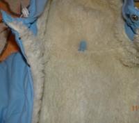 Продается детский зимний конверт на овчинке с рукавичками в идеальном состоянии.. Винница, Винницкая область. фото 3