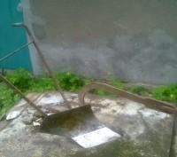 Плуг кінський. Тернополь. фото 1