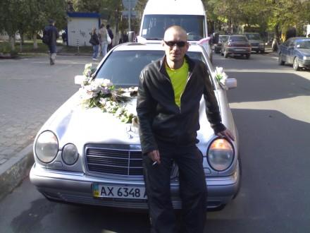 ++++++++++++++++ веселый ) ++++++++++++++++. Харьков, Харьковская область. фото 2