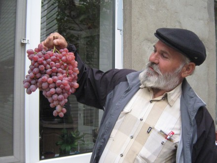 Живу  в  частном  доме, есть  виноградник , сад в  пригороде. Одесса, Одесская область. фото 3