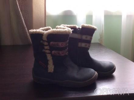 Демісезонні чобітки темно-синього кольору фірми Тополіно, розмір 23, по стельці . Львов, Львовская область. фото 1