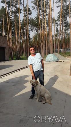 добрый отзывчивый порядочный в отношениях умею красиво ухаживать. Киев, Киевская область. фото 1