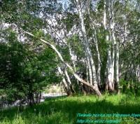 Активный туризм. Активно отдохнуть. Предлагаю пешие походы по парку Гранитно Сте. Николаев, Николаевская область. фото 3