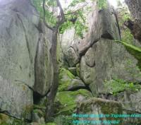 Не хотите, ли заняться активным отдыхом на природе. Есть пассивный отдых.  Это к. Николаев, Николаевская область. фото 5
