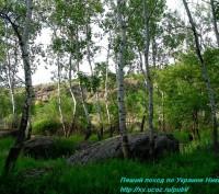 Где можно отдохнуть на природе с детьми. Только ли в самом Николаеве. В Николаев. Николаев, Николаевская область. фото 6
