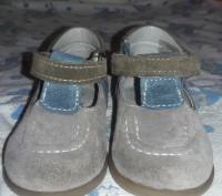 Замшевые ботиночки. Киев. фото 1