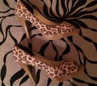 Леопардовые туфли. Львов. фото 1