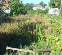 Если вам надо навести порядок у себя во дворе, (возле двора) , на дачном участке. Донецк, Донецкая область. фото 2