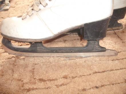 Кожаные коньки для фигурного катания. Длина стельки 22,5, высота каблучка - 4 см. Полтава, Полтавская область. фото 3