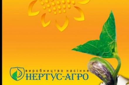 Семена подсолнуха Сержан, Ромео, Фантазия. Харьков. фото 1