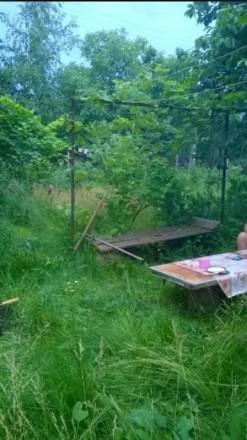 продається дача в сухому яру, земля приватизована,є деревяний будиночок, садок (. Белая Церковь, Киевская область. фото 3