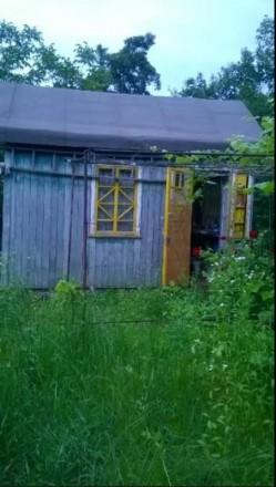 продається дача в сухому яру, земля приватизована,є деревяний будиночок, садок (. Белая Церковь, Киевская область. фото 2