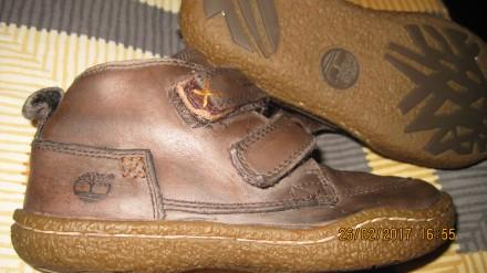 Ботинки туфли Timberland демисезон для мальчика 28,5 размер. Харьков. фото 1