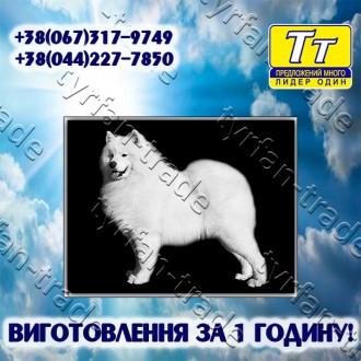 *Детальная информация и онлайн конструктор табличек на нашем официальном сайте: . Киев, Киевская область. фото 8